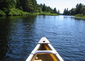 Credit: http://lifechangehypnotherapy.files.wordpress.com/2010/09/canoe-river.jpg